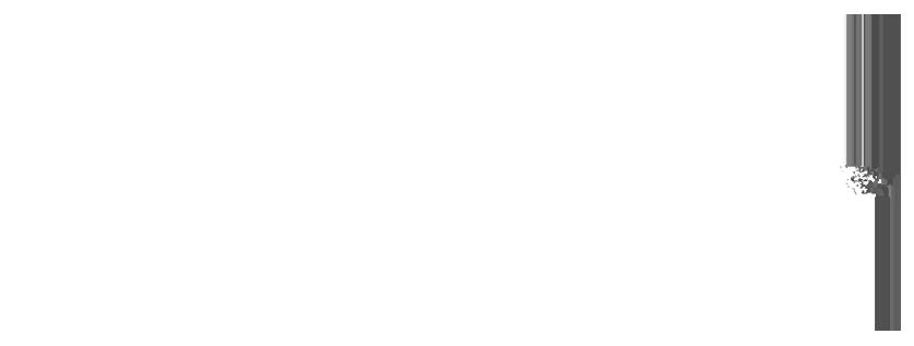 Nilo Haq